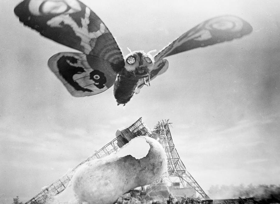 Mothra, 1961 Photograph - Mothra, 1961 Fine Art Print