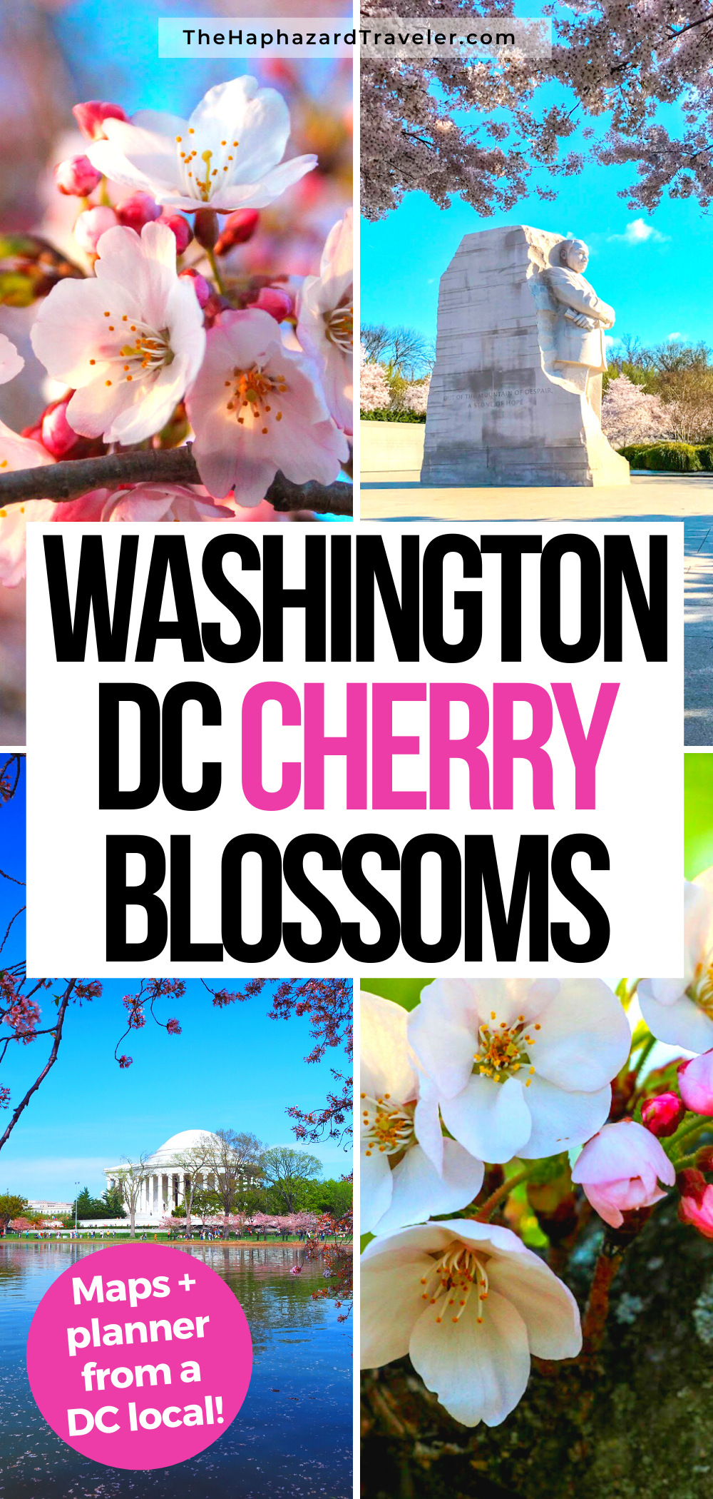 Where To See Cherry Blossoms In Dc Map Insider S Guide Spring Travel Destinations Spring Trip Cherry Blossom