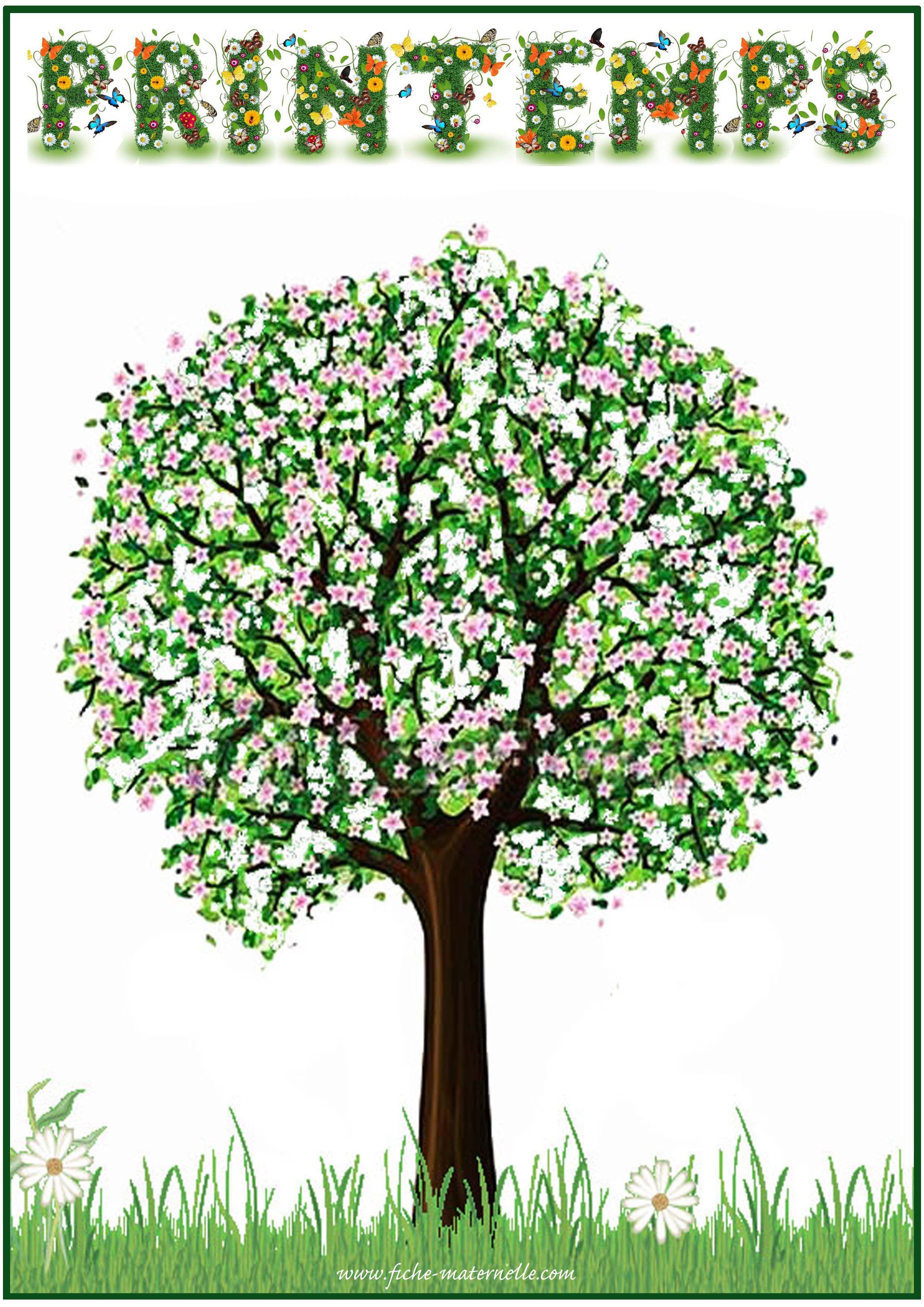Affichage Des Saisons En Maternelle Saisons Maternelles Printemps Affichage Maternelle