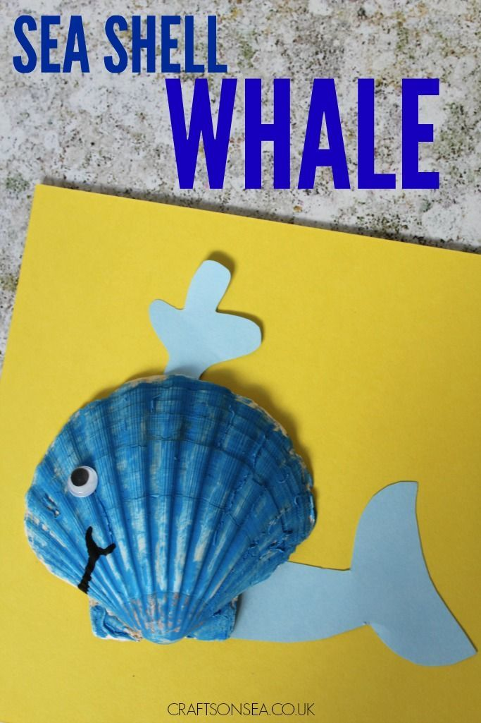 Sea Shell Whale Preschool Teacher Notes Whale Crafts Under The