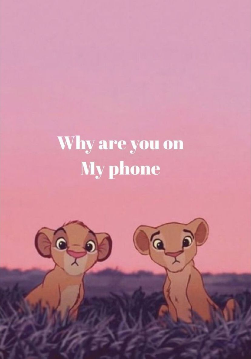 Funny Lion King Wallpaper Funny Phone Wallpaper Funny Wallpapers Funny Iphone Wallpaper