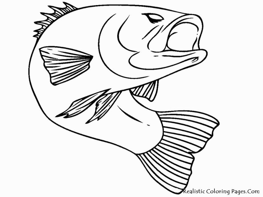Fishing Coloring Pages   Coloring Pages   Pinterest