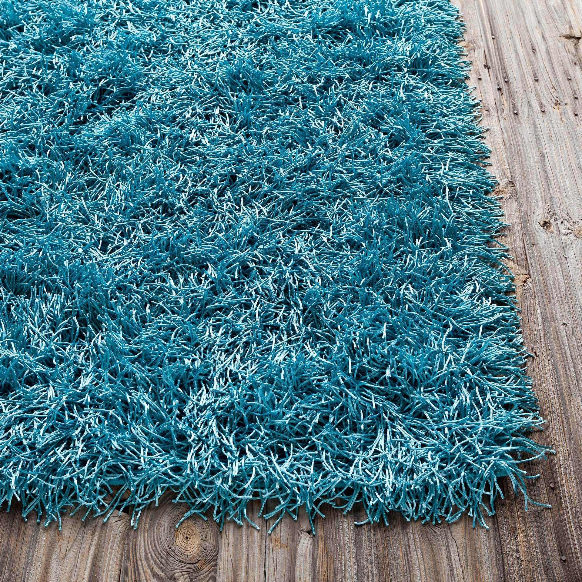 Blue Shag Area Rug