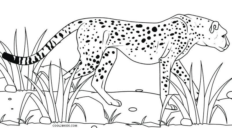 Baby Cheetah Coloring Pages In 2020 Zoo Animal Coloring Pages Animal Coloring Pages Family Coloring Pages