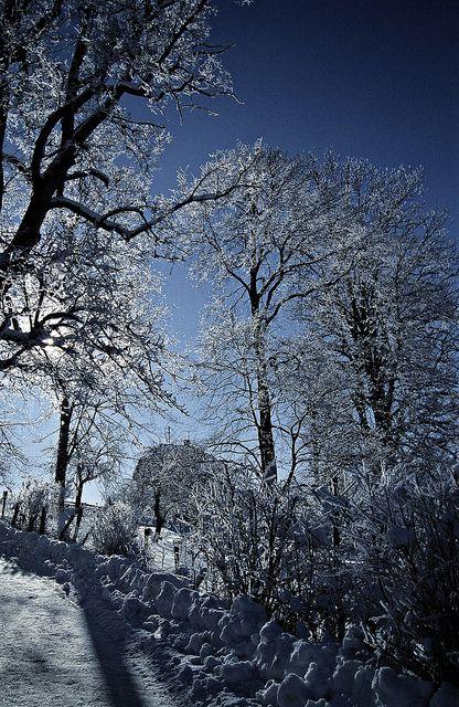 Winter in Ellbach, Germany