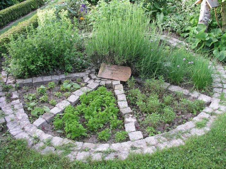 Dieses Krauterbett In Radform Schafft Ordnung Im Anbau Von Kuchenkrautern Garten Pflanzen Bepflanzung Garten