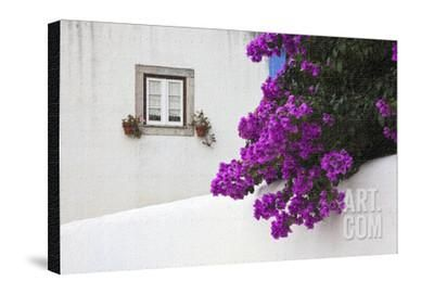 Bougainvillea Blooming In The Town Of Obidos Portugal Photographic Print Julie Eggers Art Com Scenic Art Bloom Photographic Print