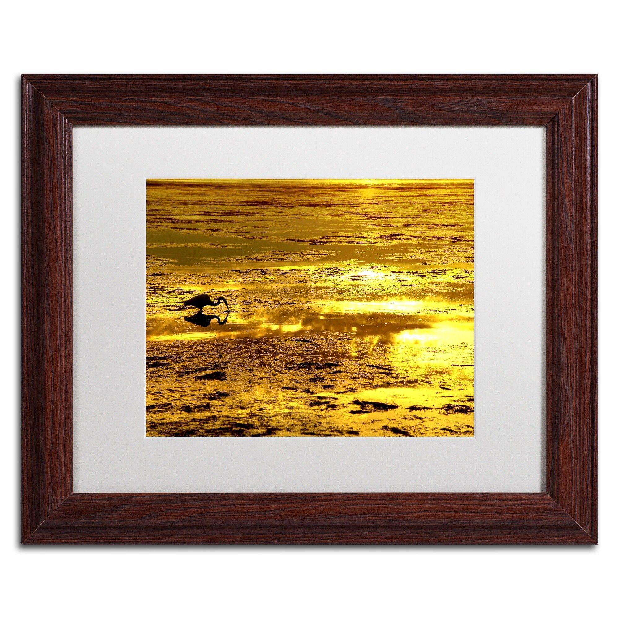 Gold Digger by Beata Czyzowska Young Matted Framed Photographic ...