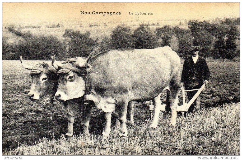 Cartes Postales / laboureur - Delcampe.fr | Carte postale, Photos anciennes, Photos historiques