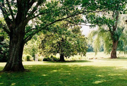 Sundara Wedding Venue In Roanoke Va Apple Orchard Wedding Orchard Wedding Wedding Venues