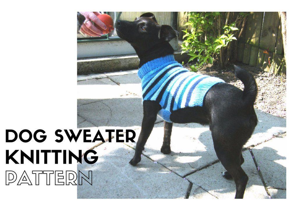 Dog Sweater Knitting Pattern | Pinterest | Knit patterns, Sweater ...