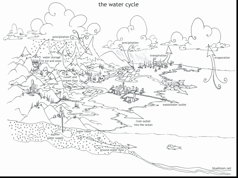Water Cycle Coloring Page Elegant Water Cycle Drawing At