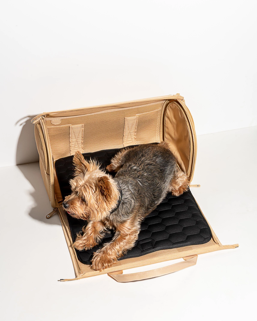 Air Travel Carrier Air Travel Dog Carrier Dog Backpack