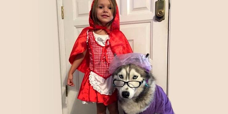 20 Encantadores disfraces para tu bebé y tu perro
