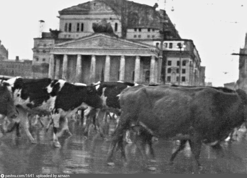 Большой театр в 1941 году. Защита Москвы. Великая ...