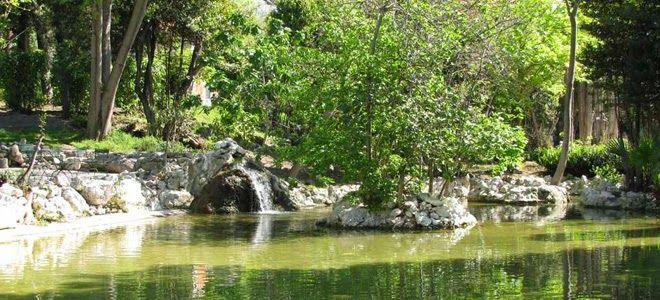 Αthens National Garden ~ Εθνικός κήπος