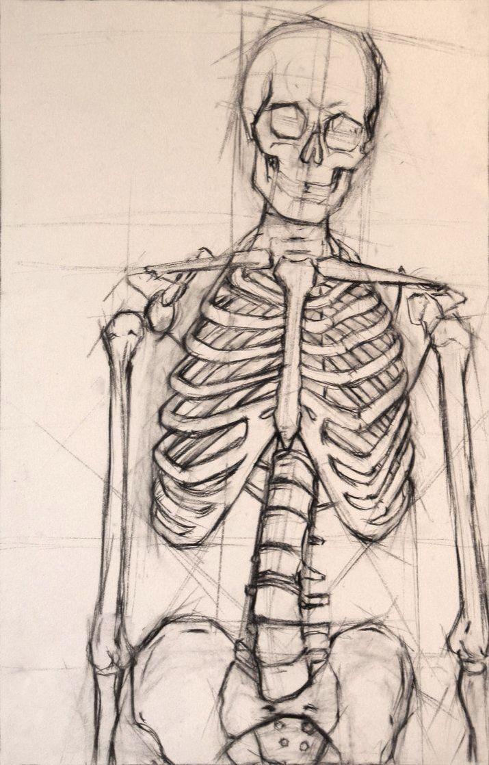 Pin de Raea Stephens en Art   Pinterest   Lápiz, Bocetos y Anatomía