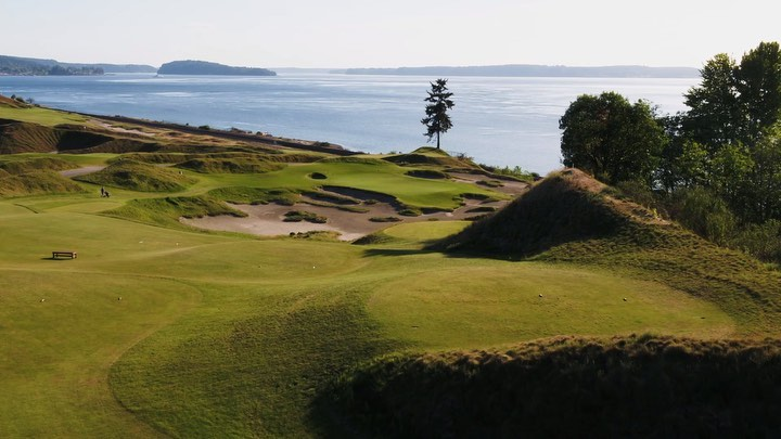 11+ Chambers bay golf pictures viral