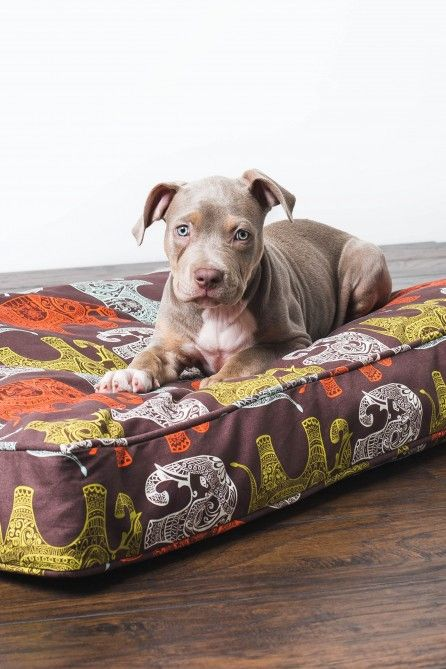 Dog Bed Duvet Elephant Pattern Earthbound Trading Co