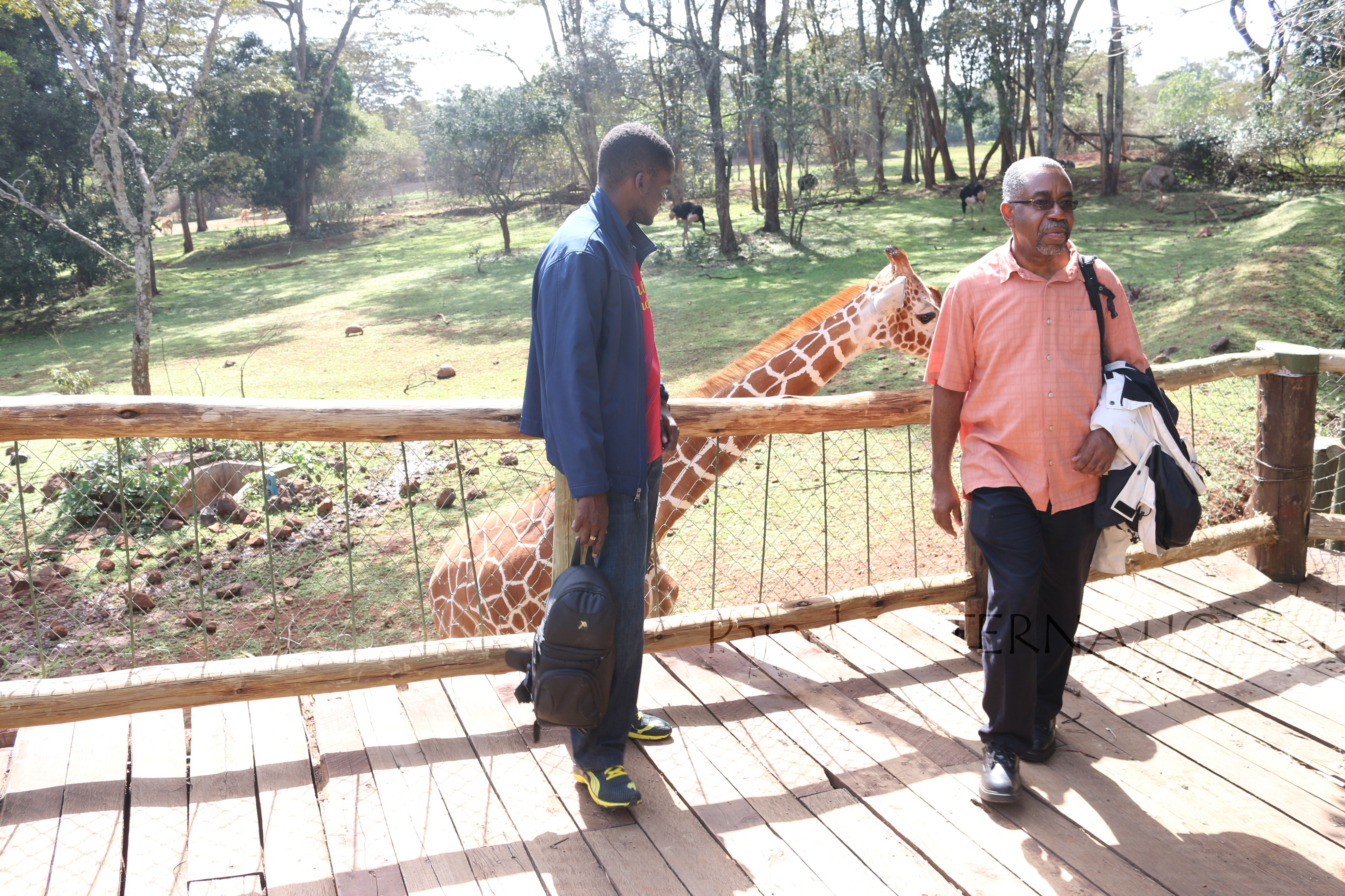 Kenyan wildlife: Baba Courtney really wasn't having any of it with that giraffe...