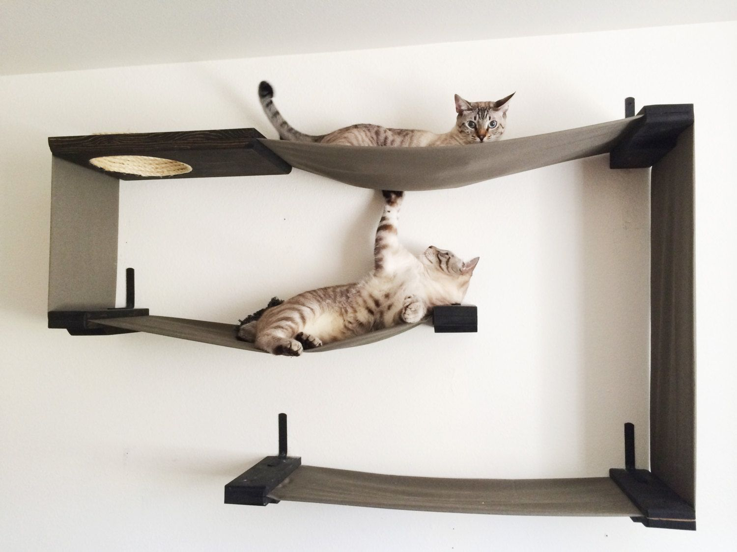 Cat furniture you and your cat will love page 3 of 7 cat cat furniture you and your cat will love page 3 of 7 amipublicfo Image collections