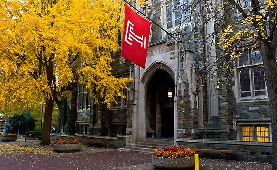 temple university essay