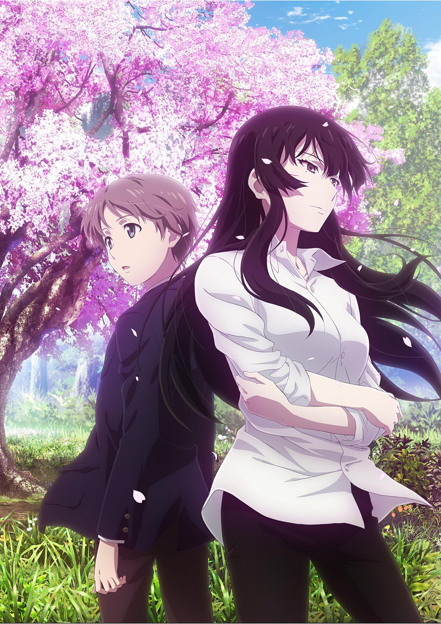 Sakurako-san no Ashimoto ni wa Shitai ga Umatteiru (TV