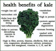 BIO E® World: Helth Benefits of Kale