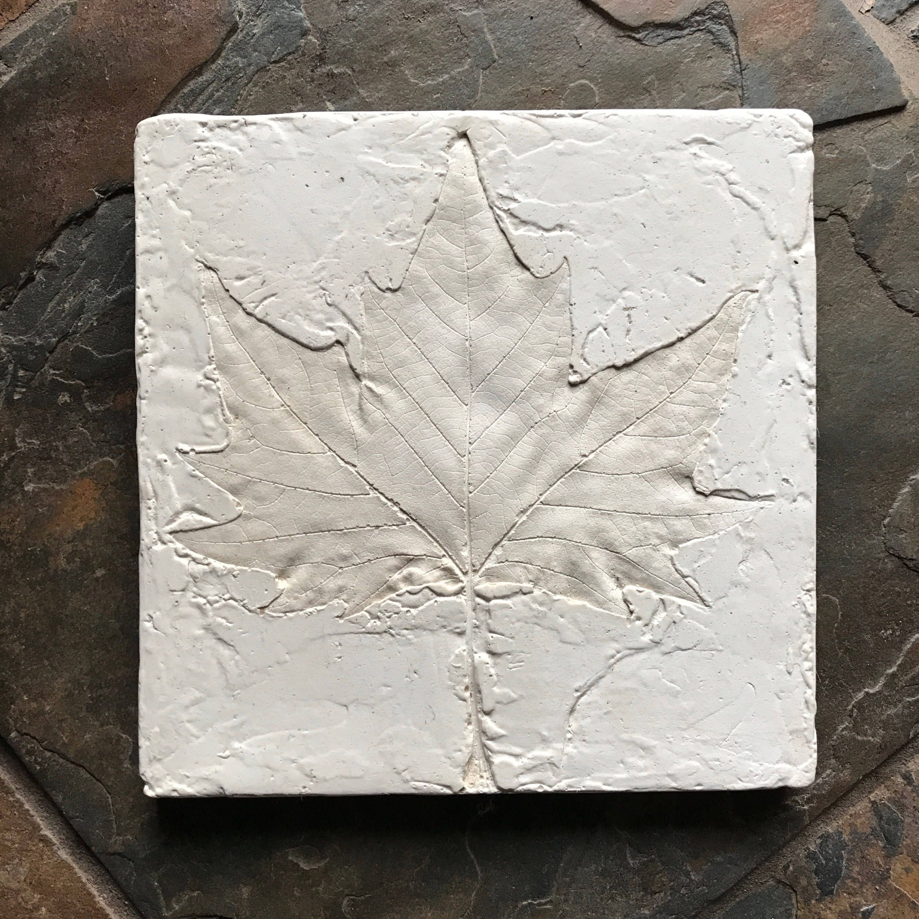 Plaster Cast Sycamore Leaf Print, Handcrafted Wall Art, Botanical Home