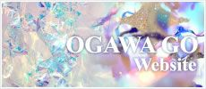 OGAWA GO Website