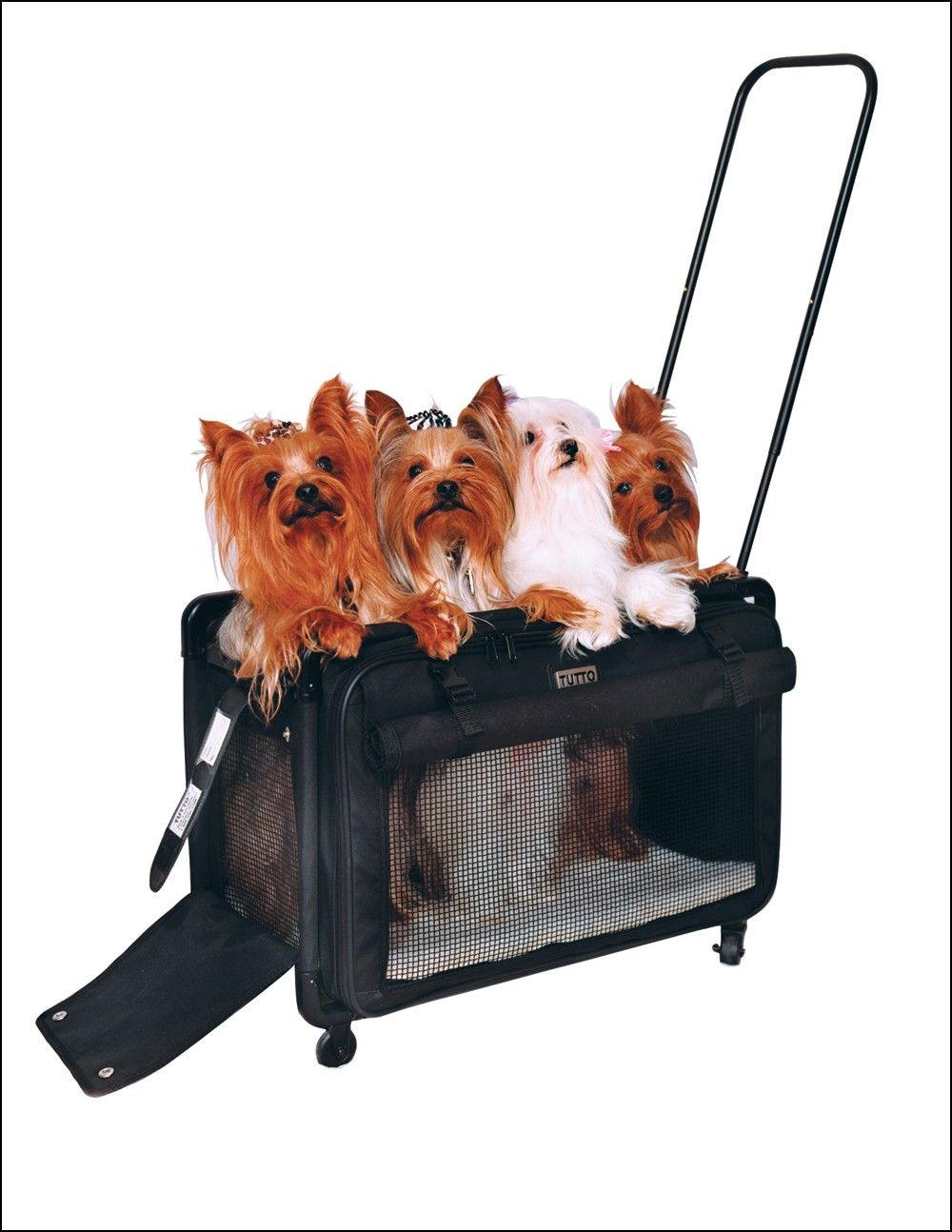 Large Cat Carrier With Wheels Cat Carriers Pinterest Cat