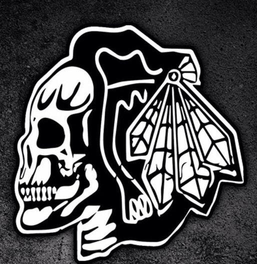 competitive price b93e2 40c1d BlackHawks | Chicago Style | Chicago blackhawks, Skull logo ...
