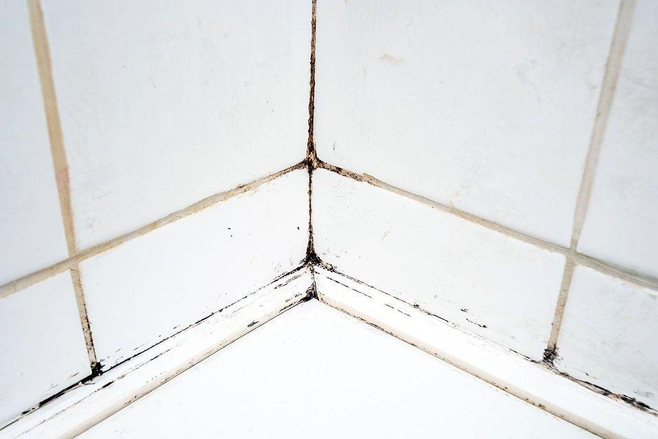 Comment Blanchir Les Joints Du Carrelage De La Salle De Bains Blanchir Joints Carrelage Nettoyer Joints Carrelage Nettoyer La Salle De Bain
