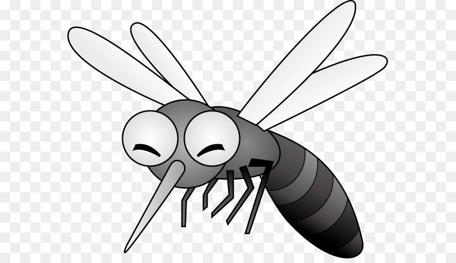 Keren 30 Gambar Nyamuk Kartun Hitam Putih Di 2020 Kartun Gambar
