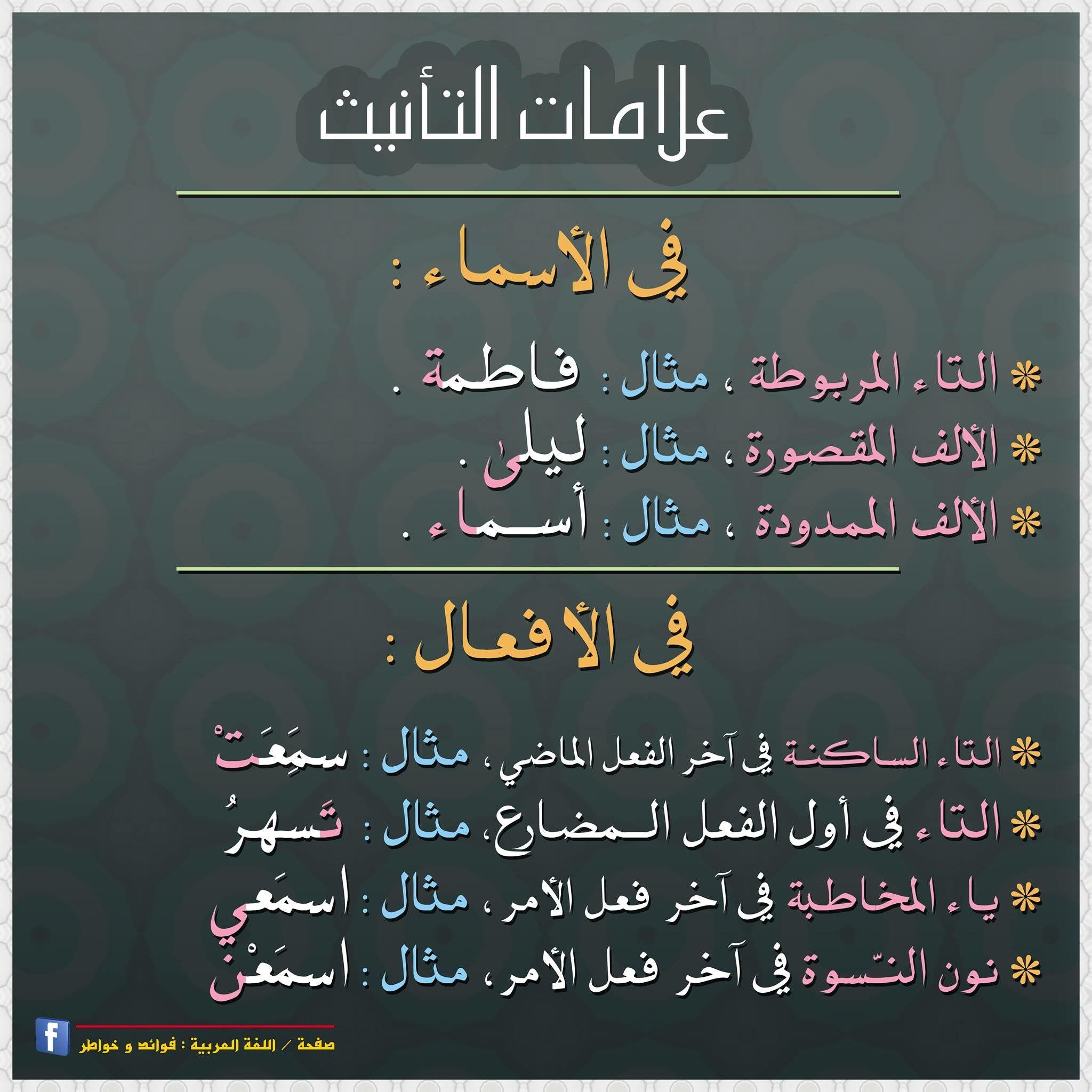 Pin By Nedno On لغتنا العربية Learn Arabic Language Arabic Language Learning Arabic