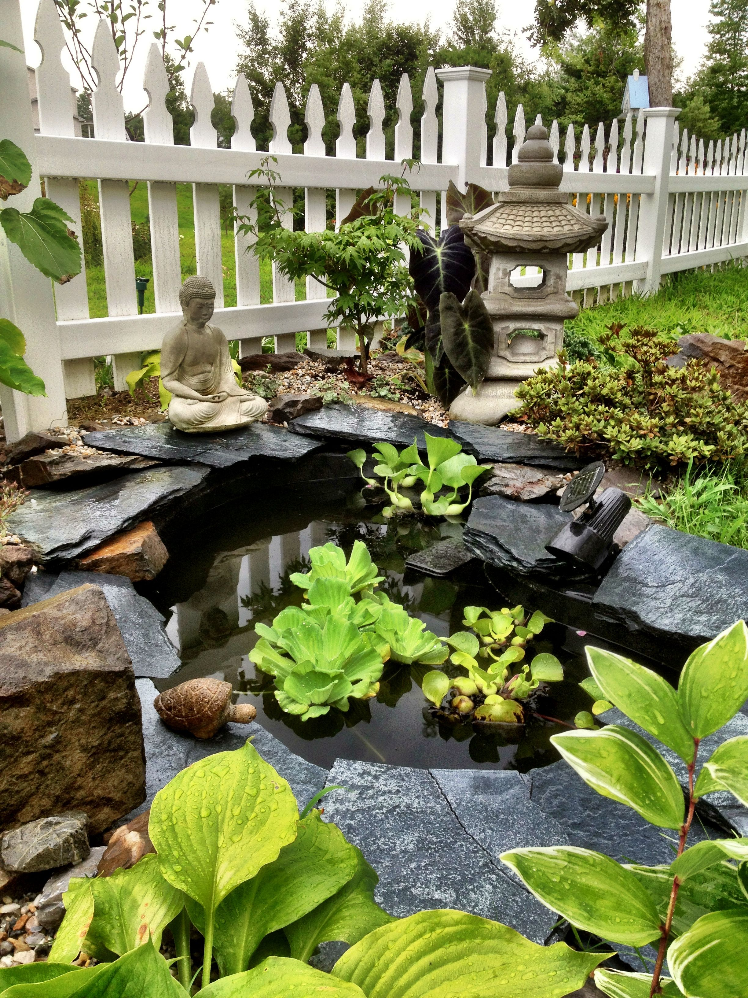 Plants For Japanese Style Garden