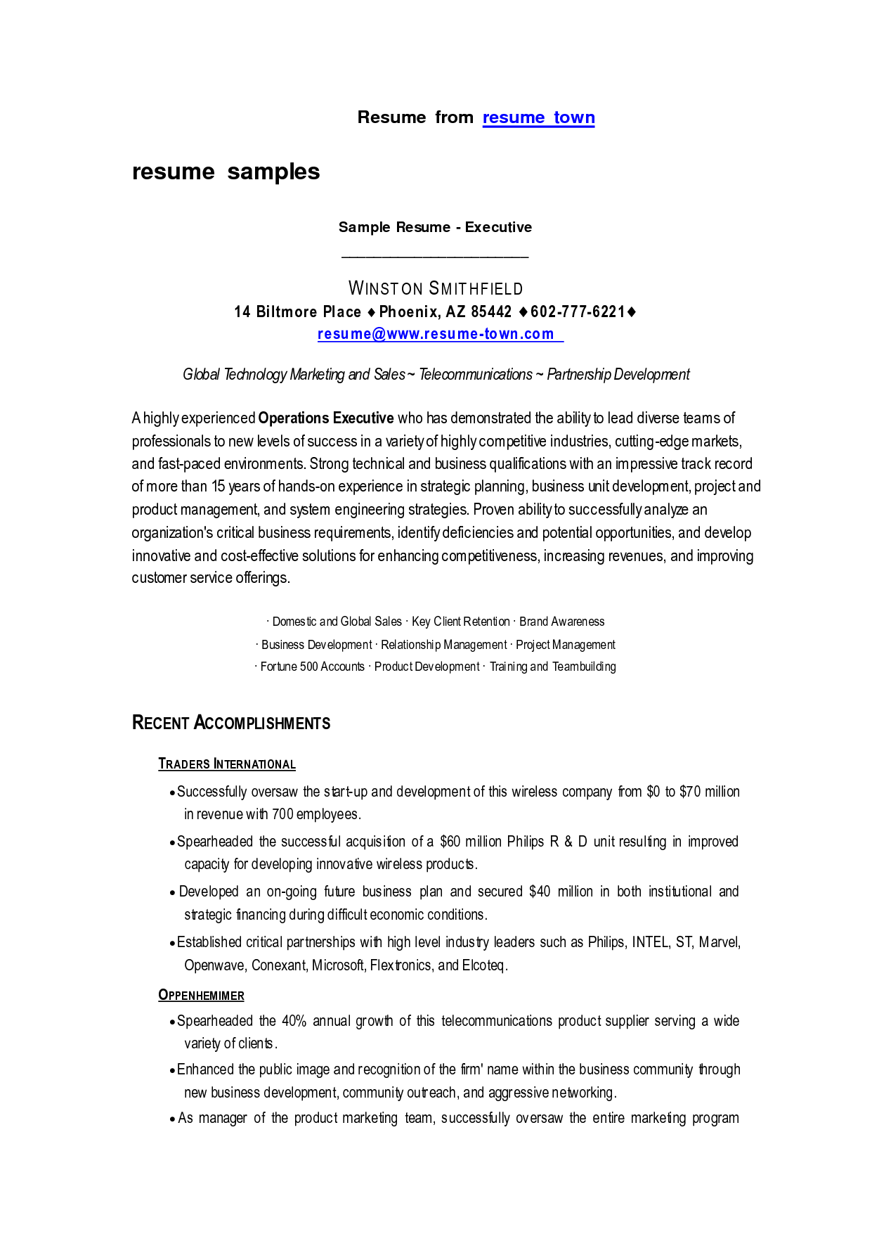 Business Resume Format Resume Sample Templates Inspiration Decoration Free Google Docs