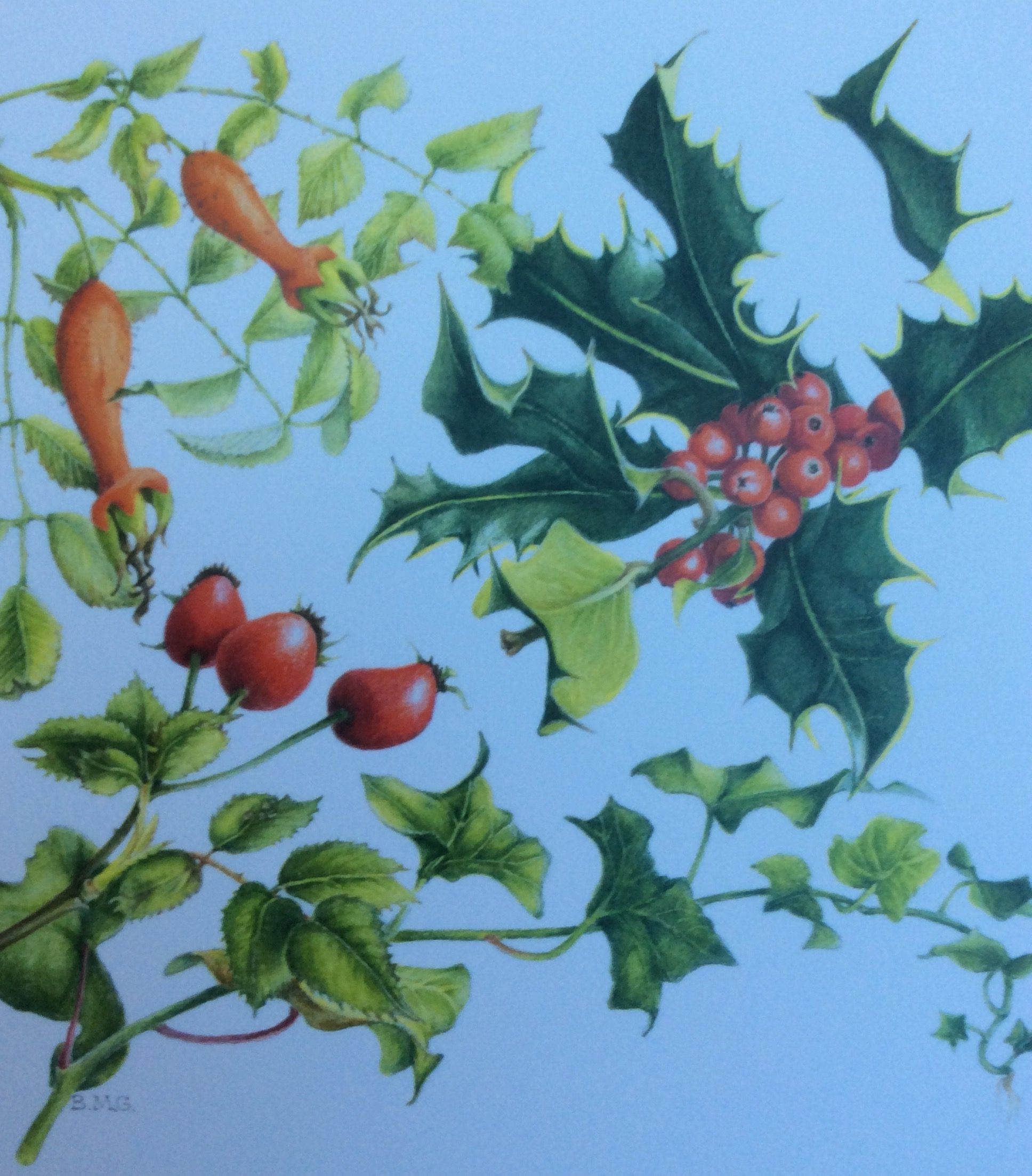 Pin by Ann Swan on Original Christmas Cards from students