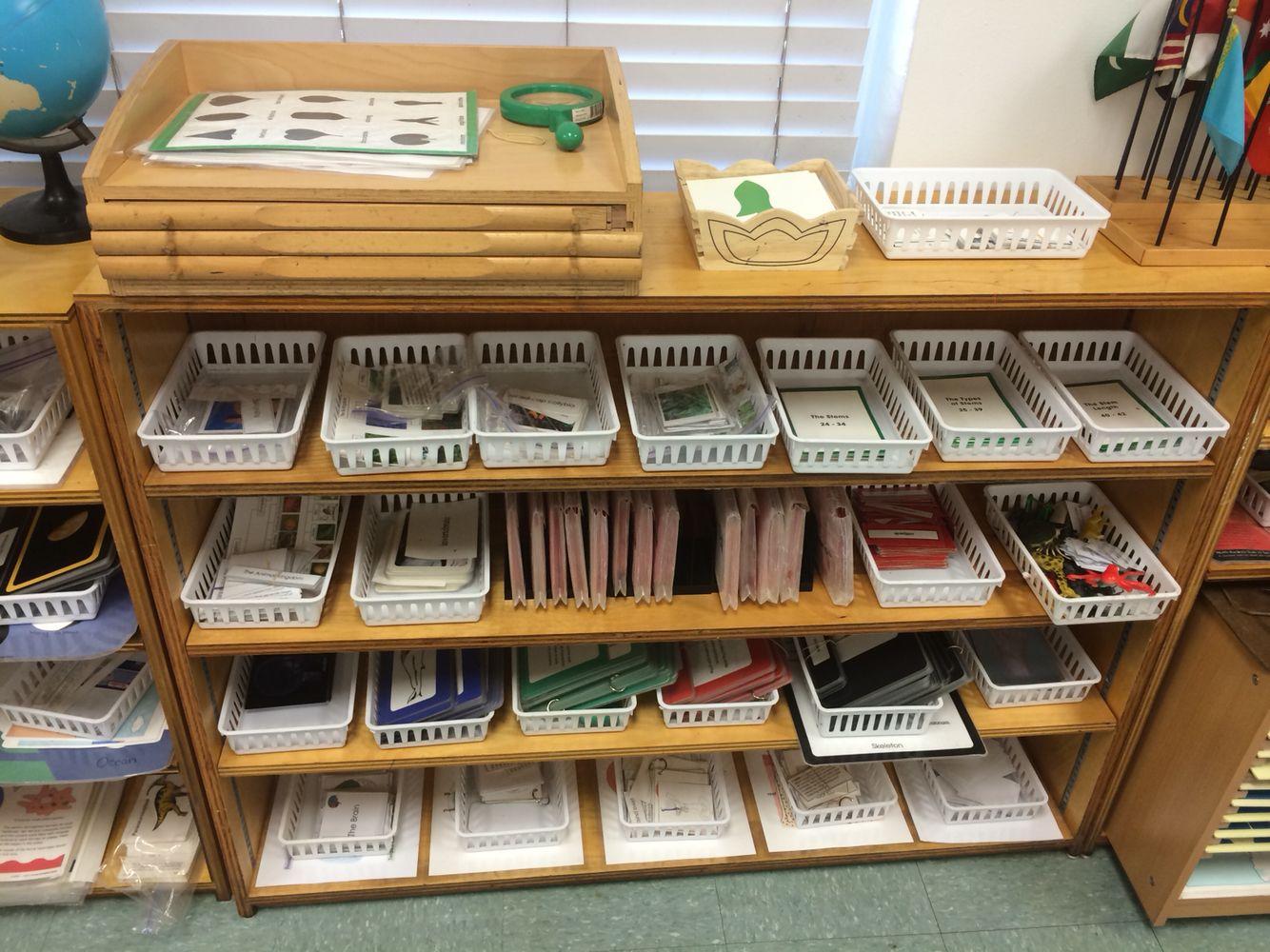 Montessori Lower Elementary Charter Botany And Zoology