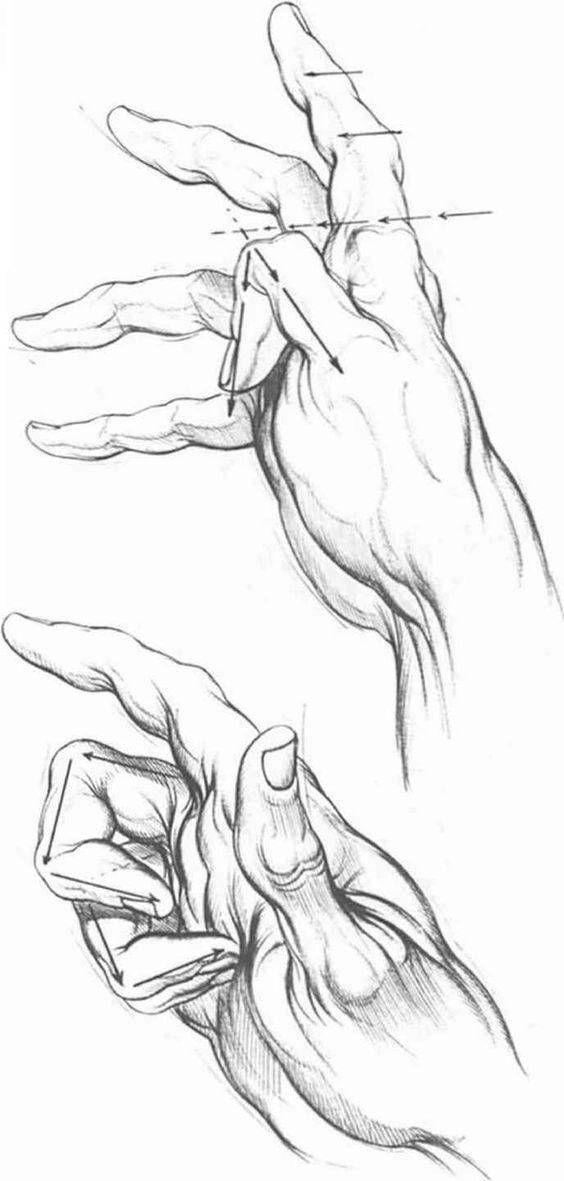como-aprender-a-dibujar-manos-humanas | mi creación de Adán ...