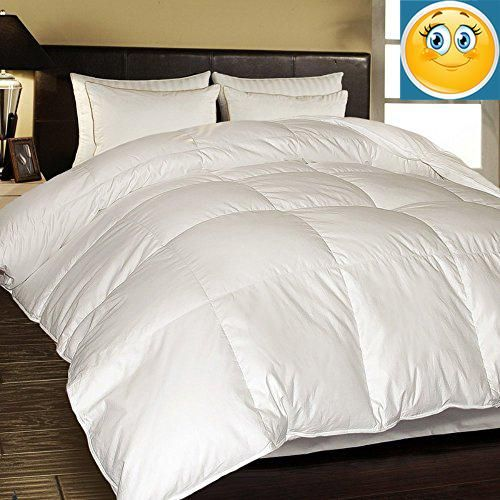 1000 Thread Count Egyptian Cotton European White Down Comforter Full Queen