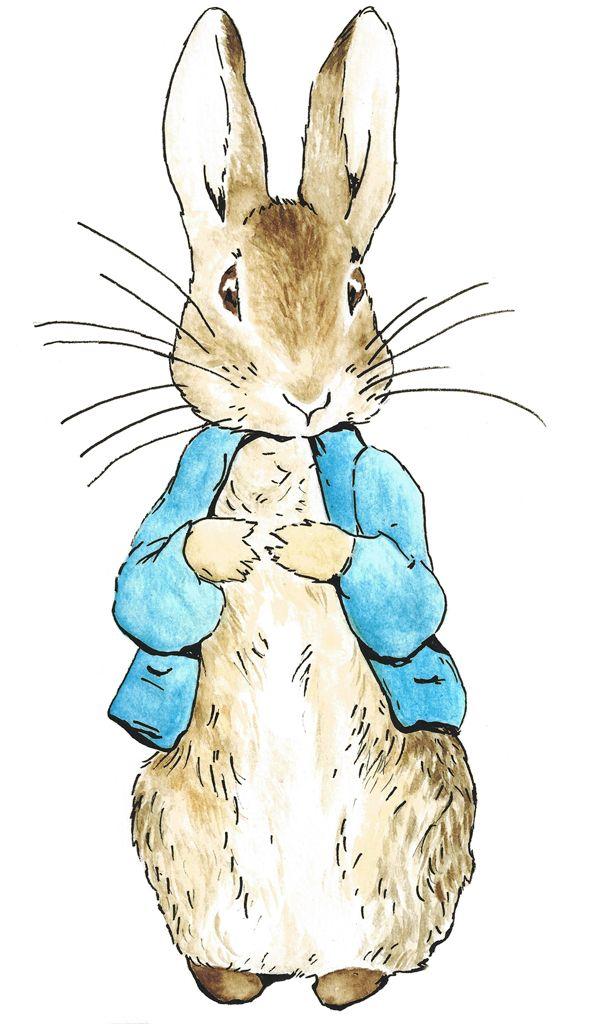 Peter rabbit templates pinterest peter rabbit and rabbit peter rabbit maxwellsz