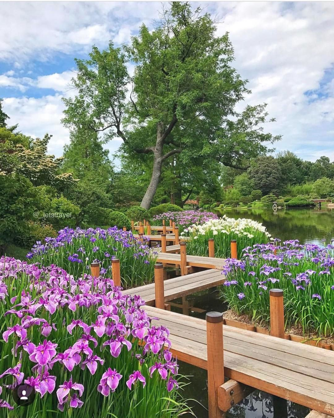84495108ca263bc84ec9629da5c796c5 - Best Time To Visit Missouri Botanical Gardens