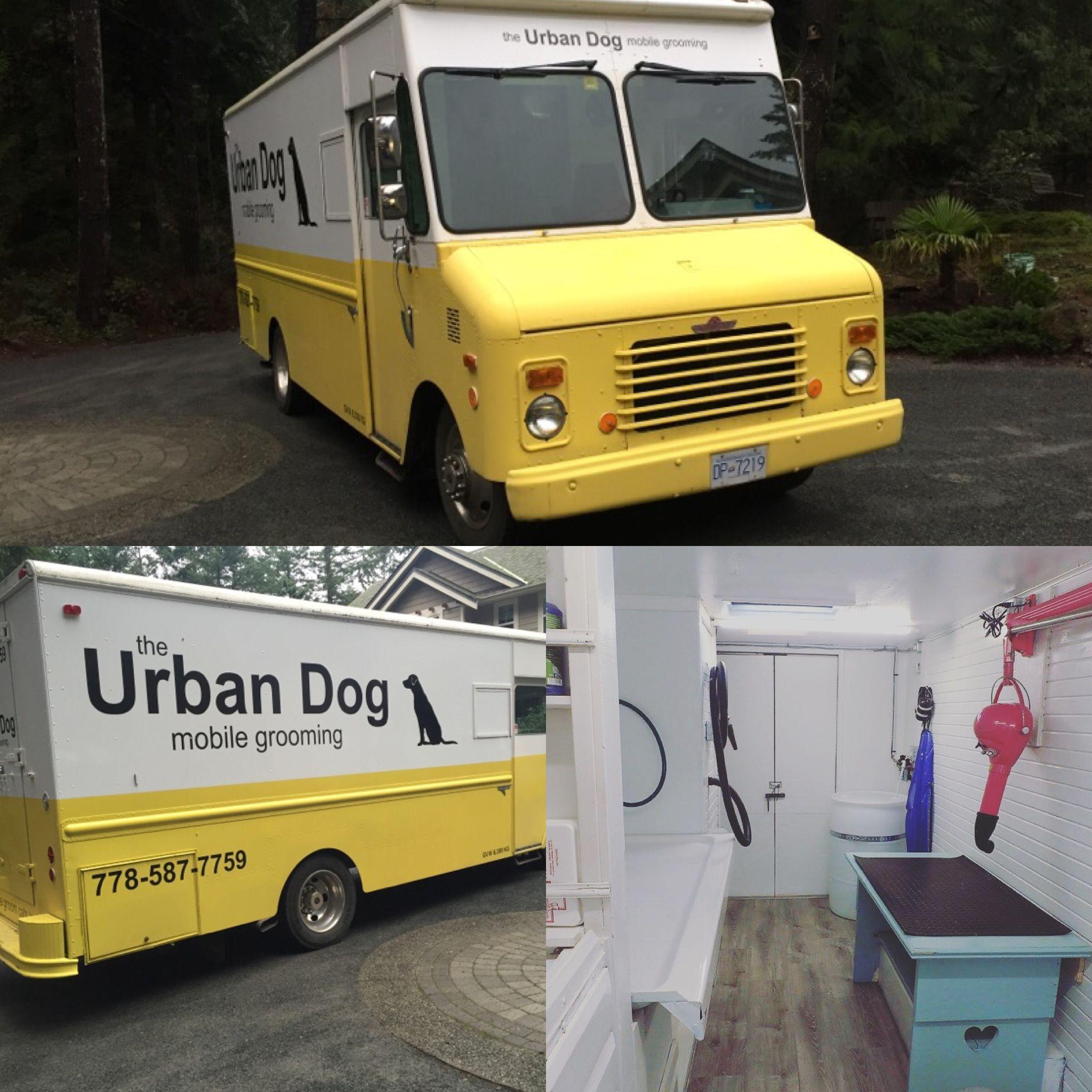 Mobile Grooming In A Renovated Grumman Van Van Island Bc Mobile Pet Grooming Pet Grooming Salon Pet Clinic