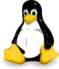Supports Linux