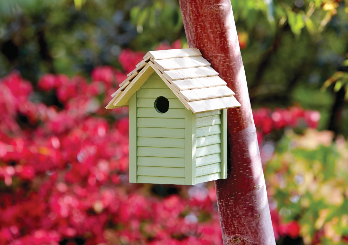 Ronseal Garden Paint: Sapling Green