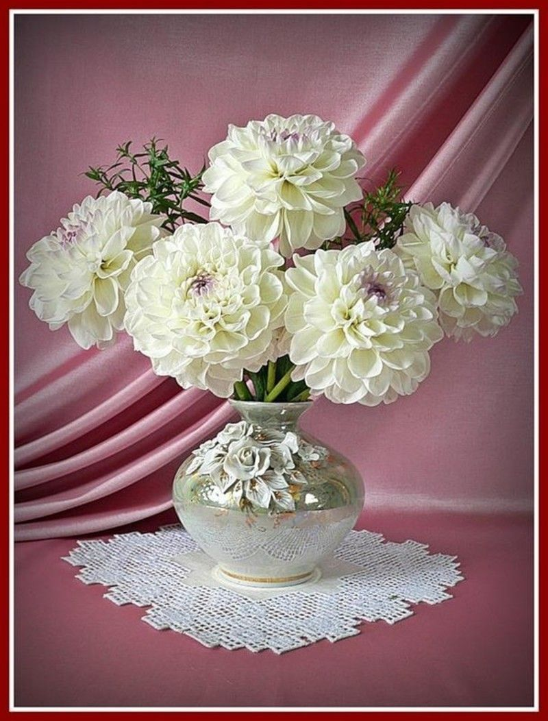 Pin By Vernie Conde On Lovely Flowers Pinterest Flowers And Gardens