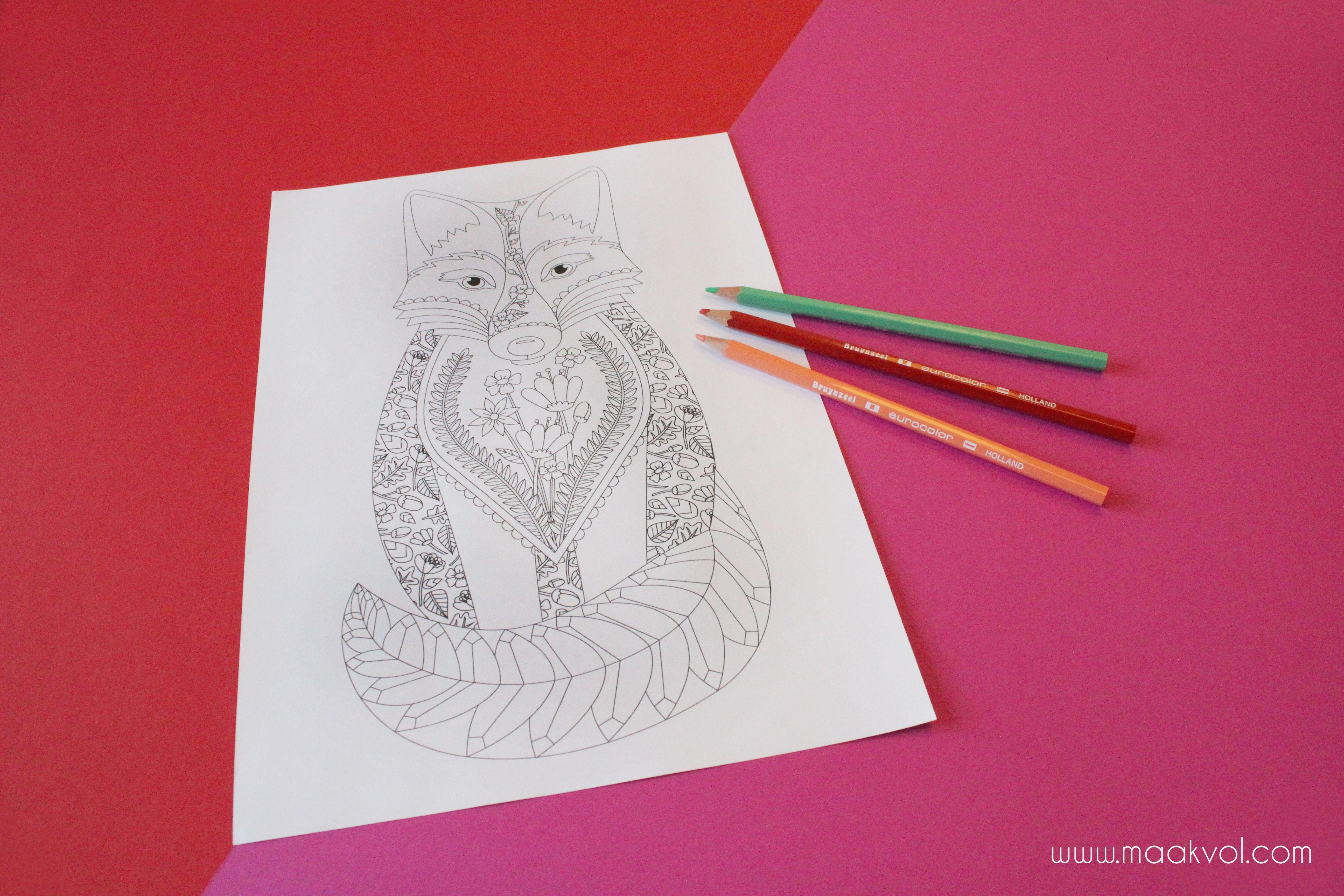 Www Maakvol Com Coloring Page Fox Kleurplaat Vos Grafisch