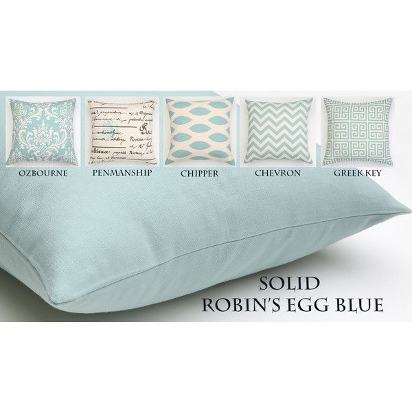 Robin's Egg Blue Decorative Throw Pillow Light Blue Pillow Euro Sham Best Light Blue Decorative Throw Pillows