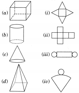 NCERT Solutions for Class 7 Maths Chapter 15 Visualising